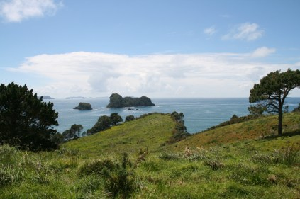 NZ_CATHEDRAL_COVE_08
