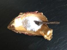 oyster shell salt