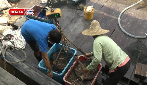 Aktiviti menangkap ikan di Kuala Selangor berkurangan 50% akibat Perintah Kawalan Pergerakan kesan covid-19