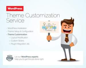 WP theme customization service image
