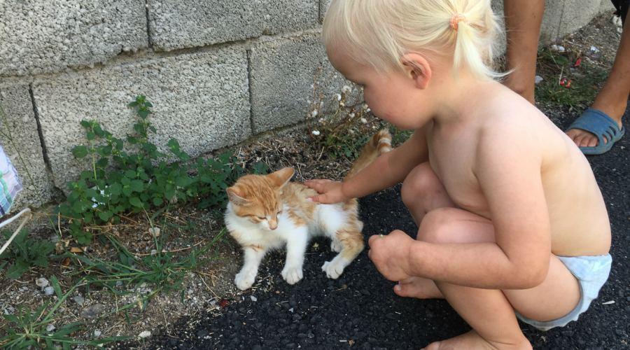 Unsere Kinder und die Tiere