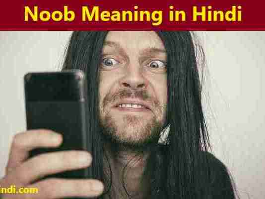Noob Meaning in Hindi