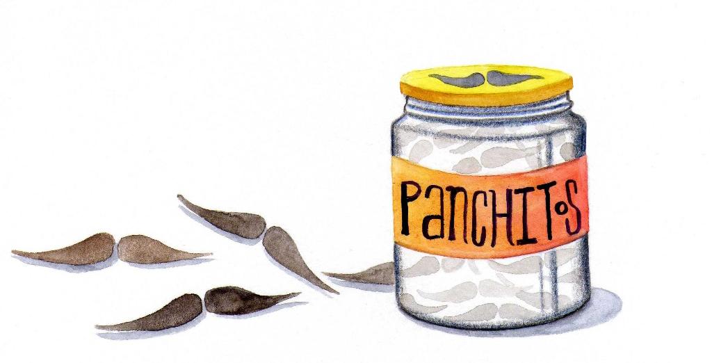 Ilustración: Augusto Metztli