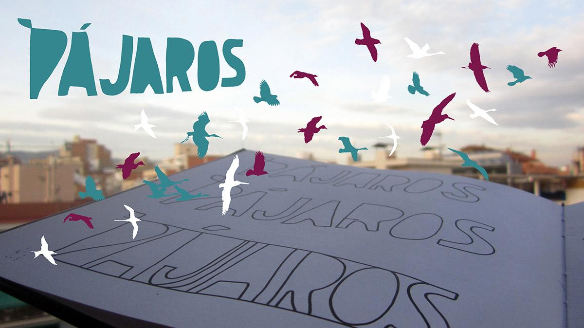 Proyecto Pájaros. Músicas que cantan, vuelan y migran