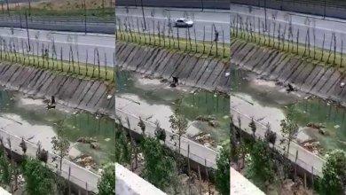 """صورة شرطة طنجة تخضع شريط """"واد مغوغة"""" لبحث ميداني وخبرة تقنية"""
