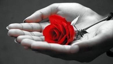 صورة حوار المحبة