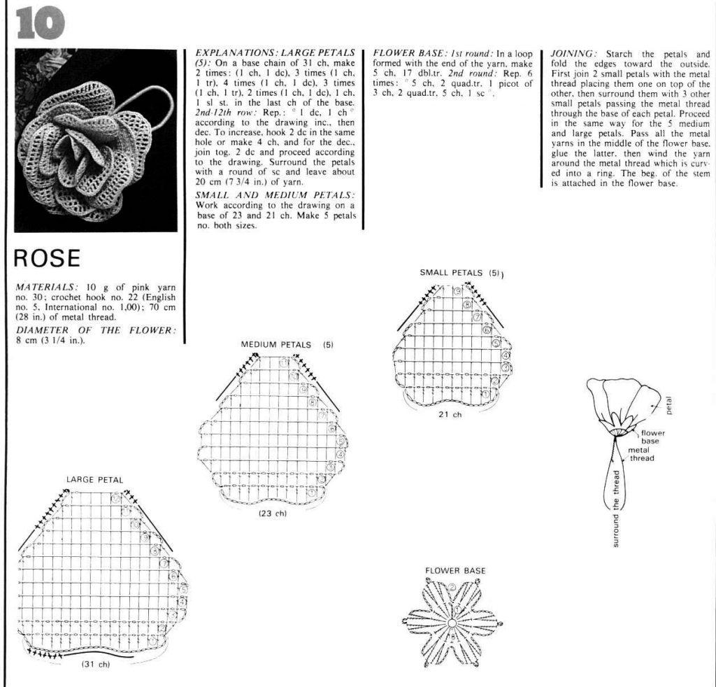 листья тюльпанов крючком схема и описание