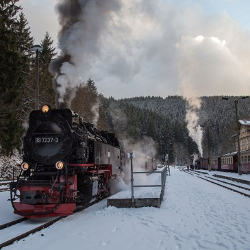 A trip to the Harz – The Selketalbahn