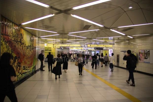 Keisei Skyliner and Tokyo Subway 72-Hour Ticket 036