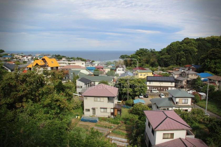 Odoriko 114 Izukyu-Shimoda Tokyo 071