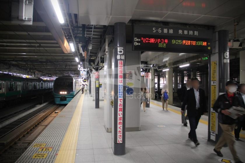 Super View Odoriko 3 Shinjuku Izukyu-Shimoda 005