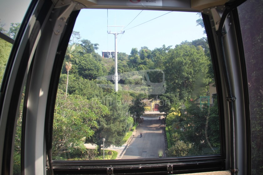 Cable Guia Jardim da Flora Parque Municipal da Colina da Guia 018