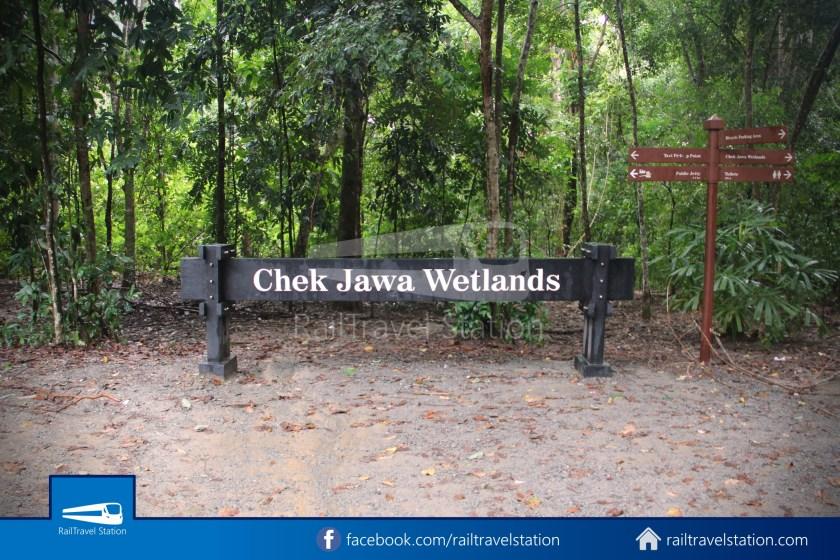 Chek Jawa Wetlands 001