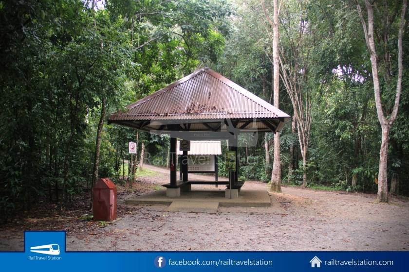 Chek Jawa Wetlands 002