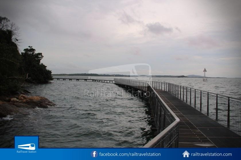 Chek Jawa Wetlands 012