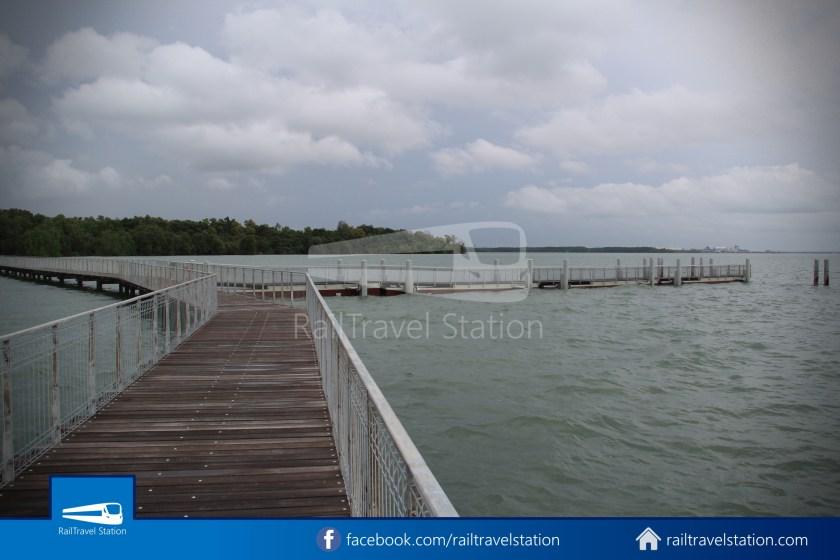 Chek Jawa Wetlands 020