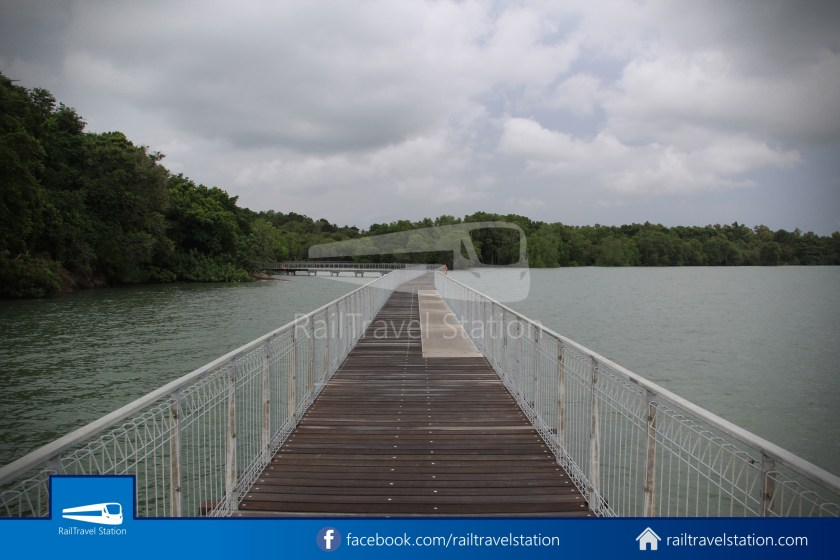 Chek Jawa Wetlands 021