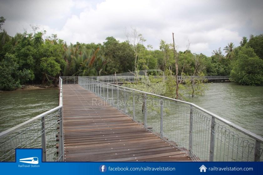 Chek Jawa Wetlands 025