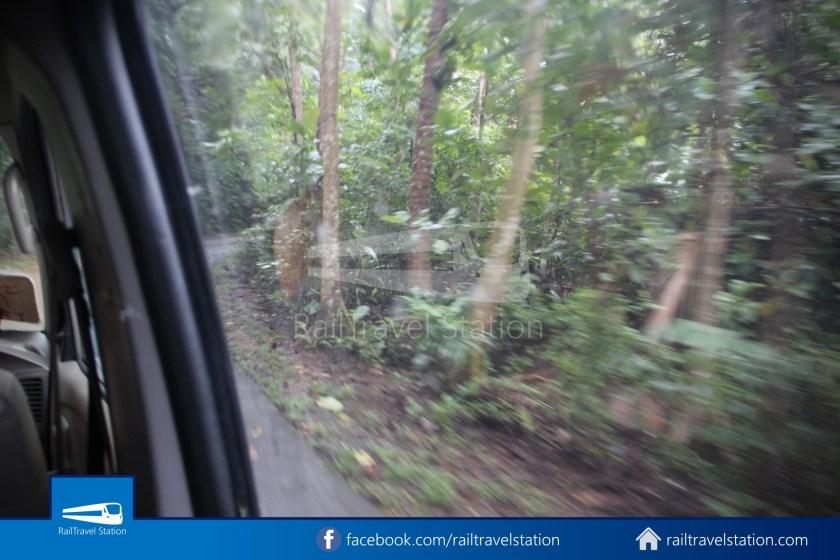Pulau Ubin Taxi Van Main Jetty Chek Jawa Wetlands 006