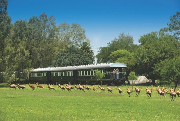 Rovos Rail pride of Africa train
