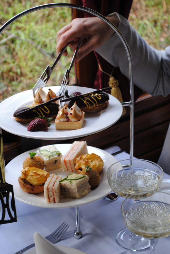 afternoon tea on the Puffing Billy Steam Train