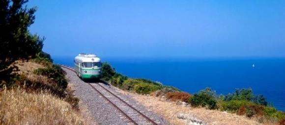 Trenino Verde sardina