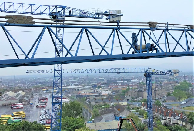 Cranes Today: Irish Cranes brings Raimondis to Dublin