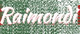 Raimondi Moto