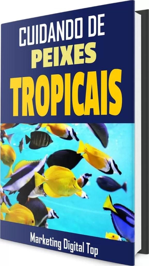 E-books plr em português grátis (São 3 e-books plr em português grátis) Raimundo Oliveira