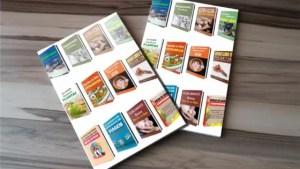 E-books plrs em português 2020 (42 ebooks plrs 2020 em português com direito de revenda)