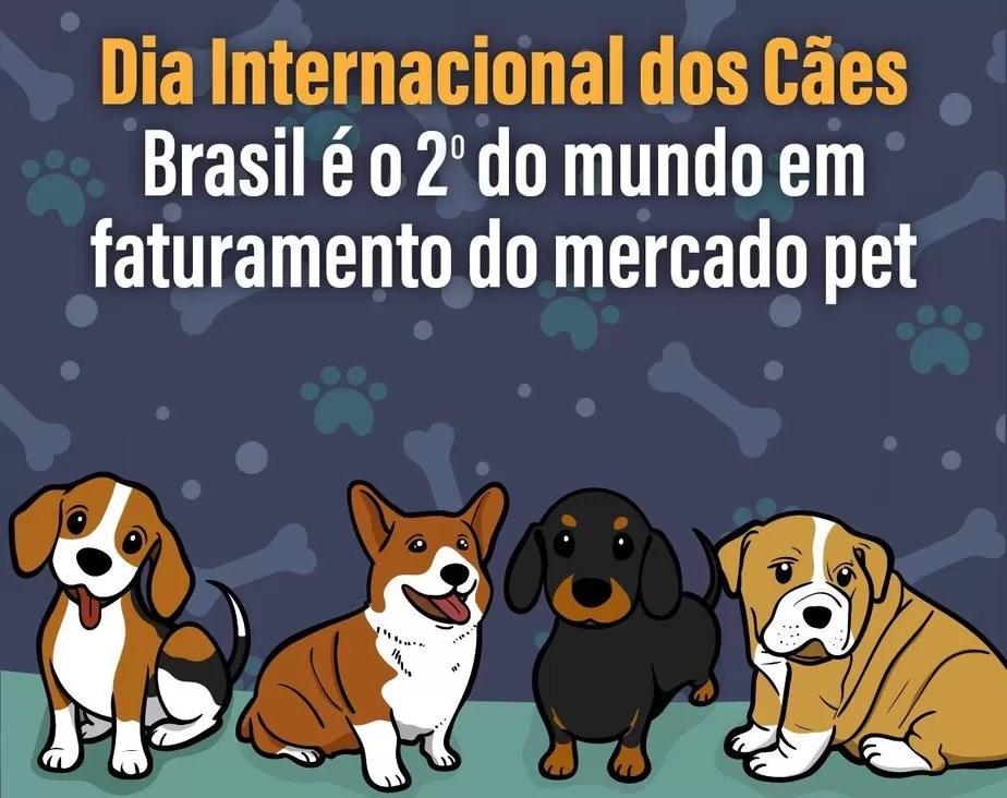 Dia Internacional dos Cães: Brasil é o 2º do mundo em faturamento do mercado pet