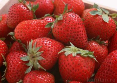 ЧТО ТАКОЕ ГМО И ЗАЧЕМ ОНИ НУЖНЫ 2