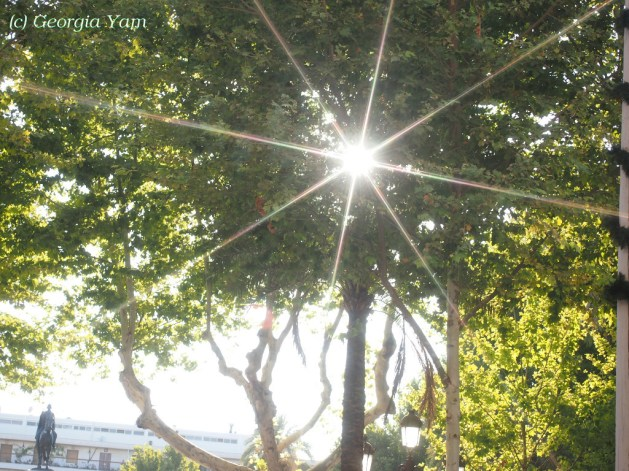 Sun glimpses
