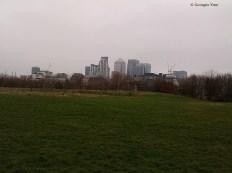 Canary Wharf from the city farm