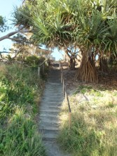 surf club steps