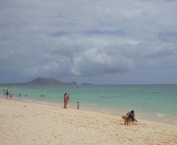 ビーチビーチ!!