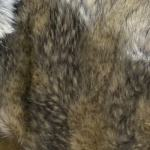 Pels (Fur)