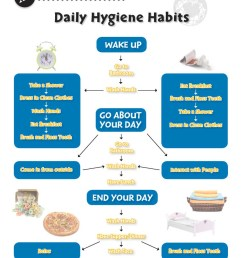 Daily Health \u0026 Hygiene Skills: Daily Hygiene Habits - WORKSHEET - Grades 6  to 12 - eBook - Worksheets - Classroom Complete Press [ 1165 x 897 Pixel ]