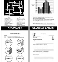 Animals: Classification \u0026 Adaptation - Grades 4 to 6 - Print Book - Lesson  Plan - Rainbow Horizons [ 1165 x 900 Pixel ]