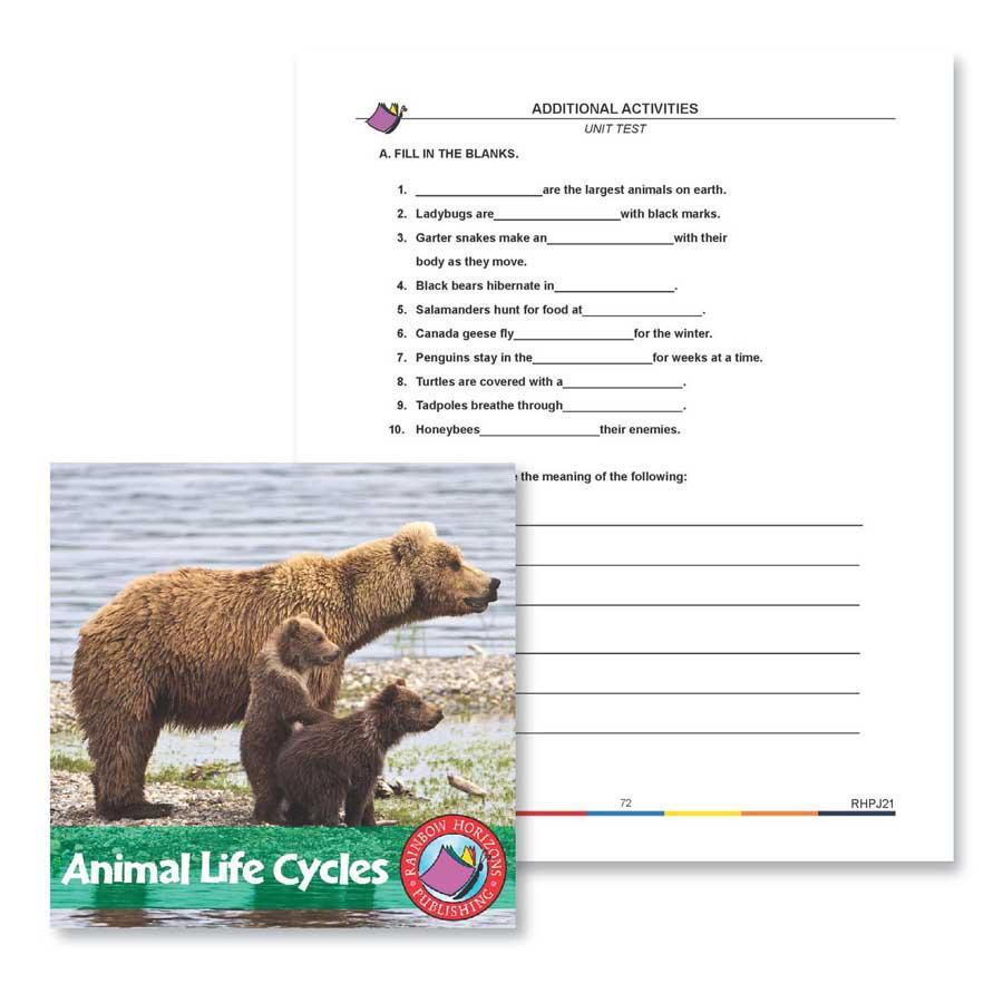 medium resolution of Animal Life Cycles: Unit Test - WORKSHEET - Grades 2 to 3 - eBook -  Worksheet - Rainbow Horizons