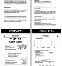 Animal Life Cycles - Grades 2 to 3 - eBook - Lesson Plan - Rainbow Horizons [ 1165 x 900 Pixel ]