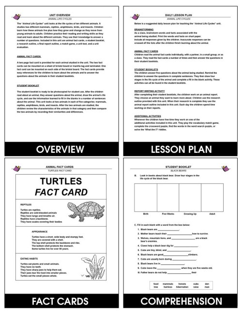 small resolution of Animal Life Cycles - Grades 2 to 3 - eBook - Lesson Plan - Rainbow Horizons