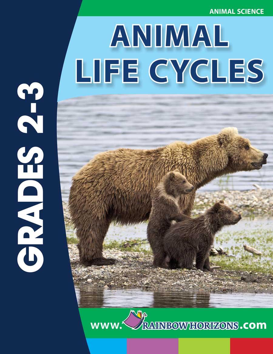 medium resolution of Animal Life Cycles - Grades 2 to 3 - eBook - Lesson Plan - Rainbow Horizons