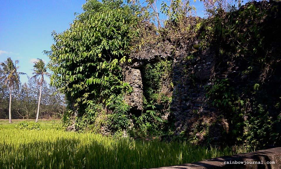 A view of Mayon from Cagsawa near Legazpi City