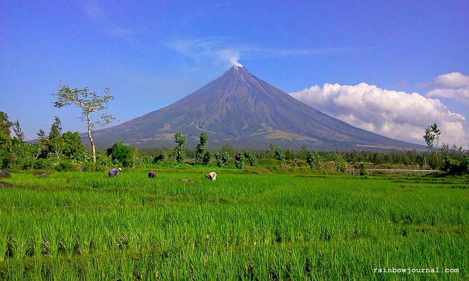 Picture perfect Mayon volcano and farmers