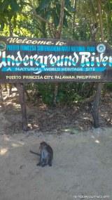 Puerto Princesa Underground River Tour - Surrounding area