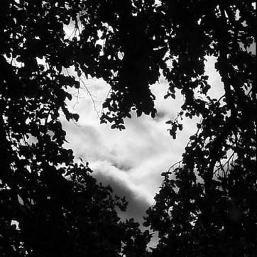 Heart (monochrome)