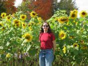 Amanda in sunflower field