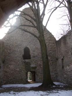 Der Baum wächst im Schiff der Kirche