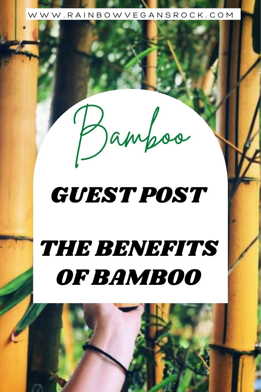 Benefits of bamboo, guest post Sol Terra shop